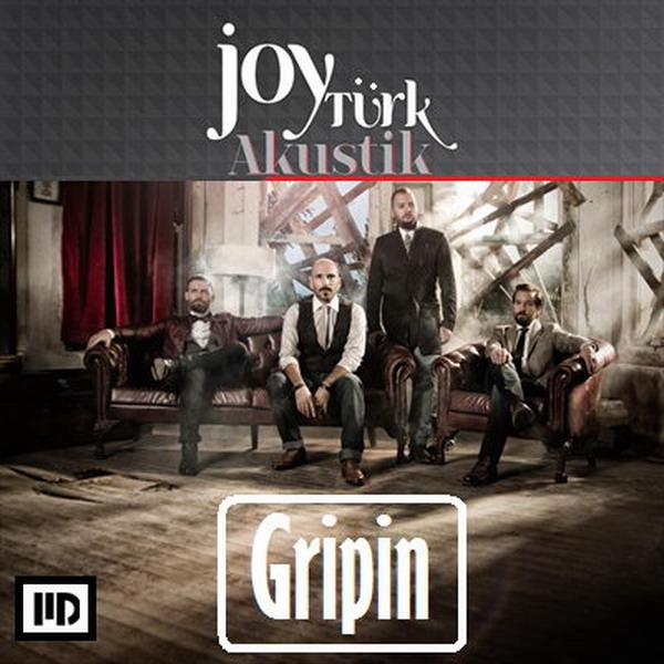 Gripin 2013