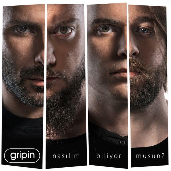 Gripin 2017