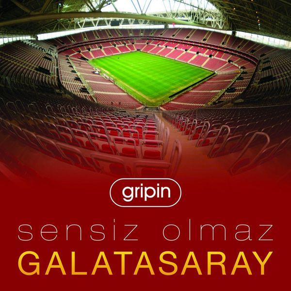 Gripin 2012